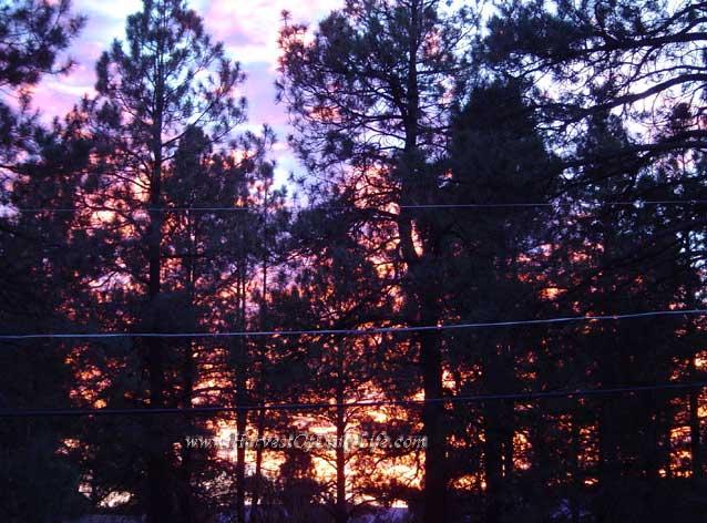 nov-27-sunset-1.jpg