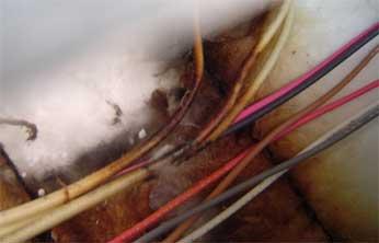 burned-wires-insulation1.jpg