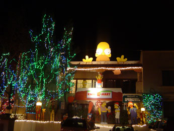 simpsons-xmas-lights.jpg
